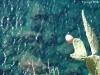 corniglia-il-mare-sotto