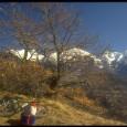 Una piccola arrampicata nel Vallone Centrale Data :28 Febbraio 1995 Quota Partenza: 350 m. Quota Arrivo : 1050 m. Dislivello : 700 m. Lunghezza : 7 Km. Durata : 3 […]